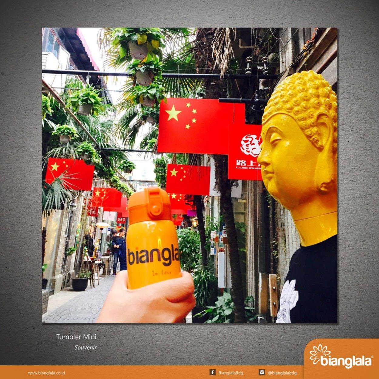 tumbler at China4