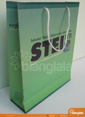 paper bag STEI